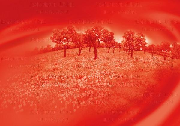 Landschaft mit Mandelbäumen