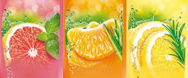 Fotorealistische Früchte
