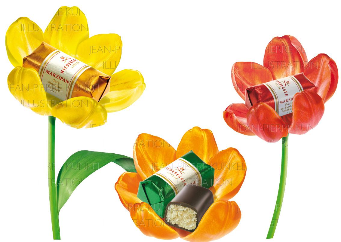 Niederegger-Tulpen