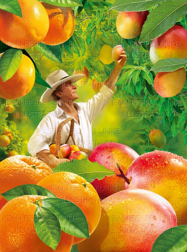 Obstpflücker 2