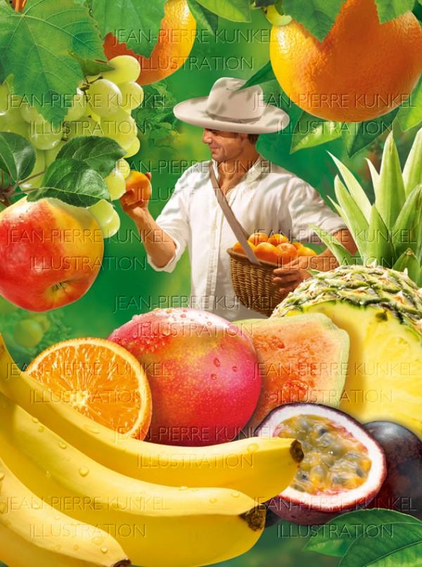 Obstpflücker 1