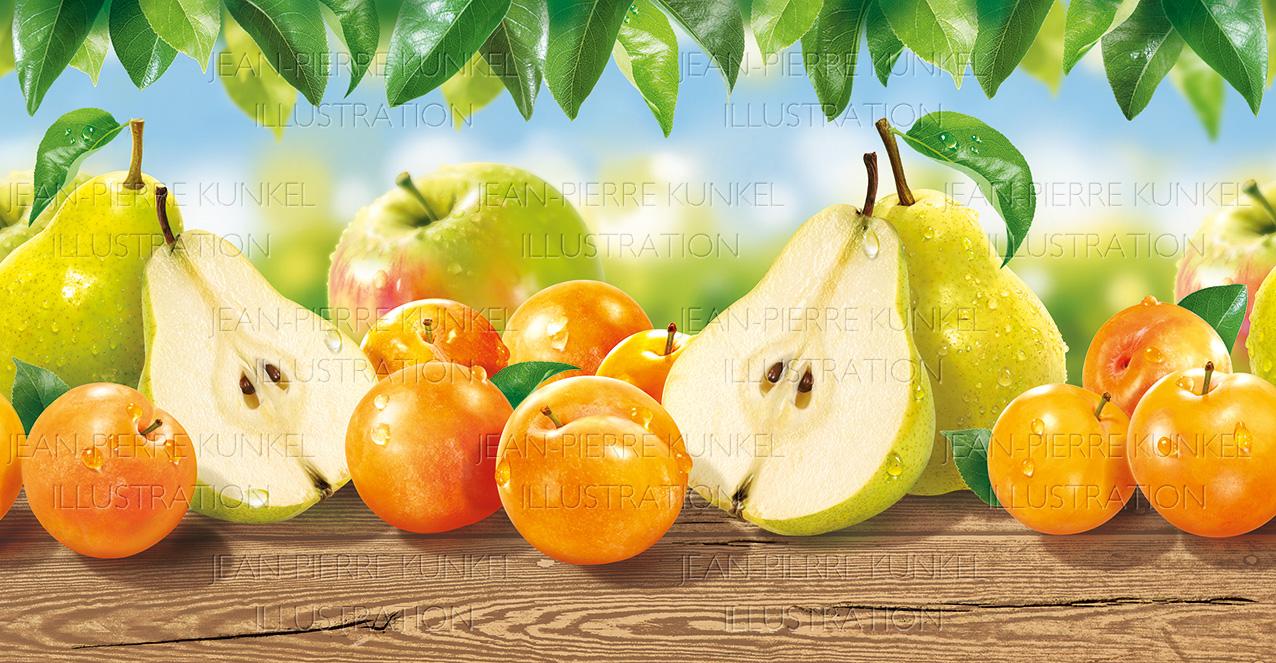 Gartenfrüchte 2