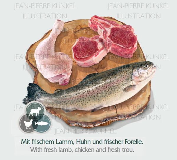 Produktbild Fisch und Fleisch 3