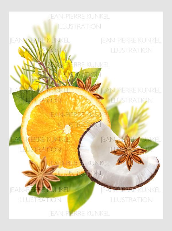 Orange-Kokos